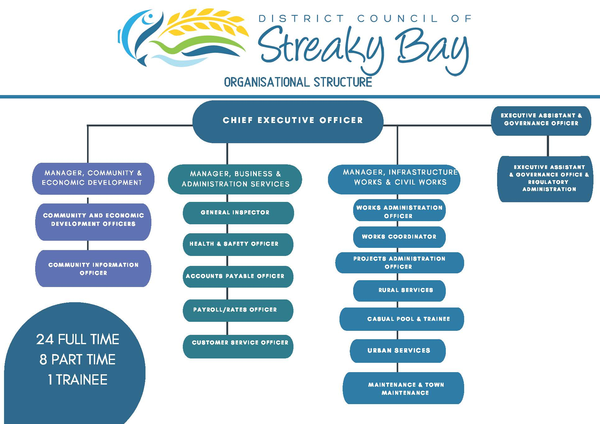 Council Employee Organisation Structure without Names